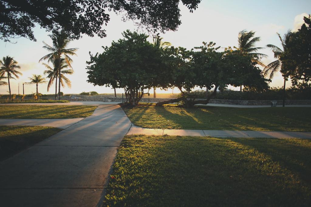 Miami Beach morning