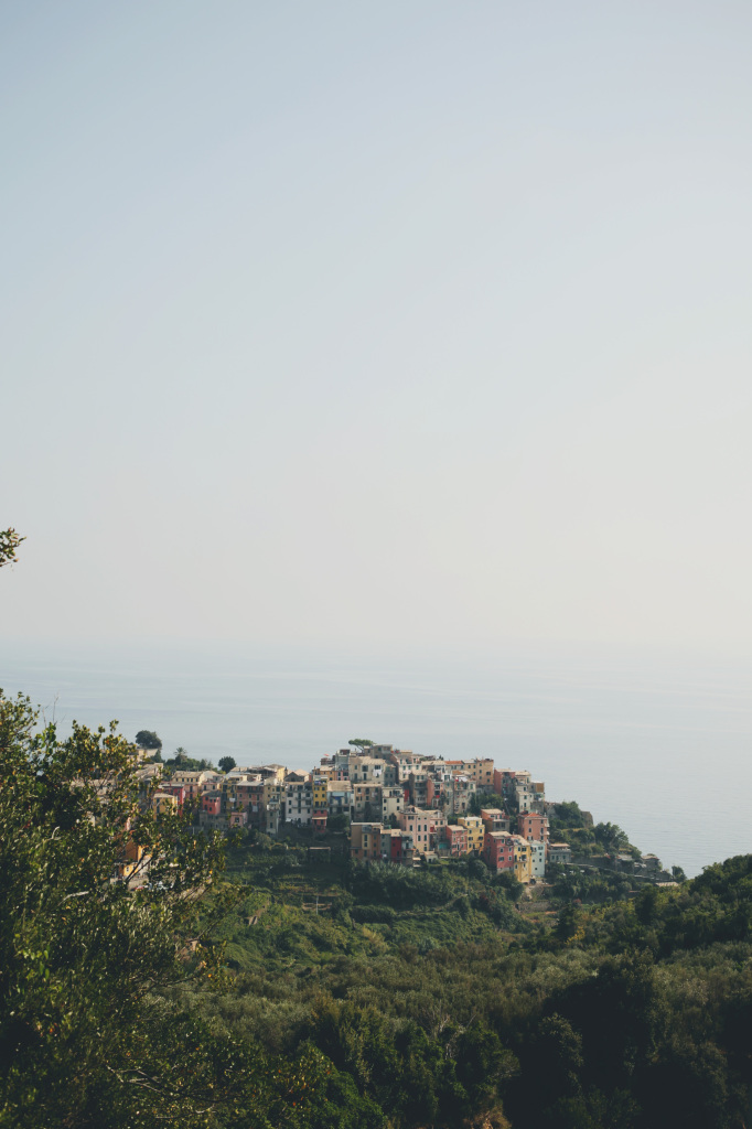IMG_0028a