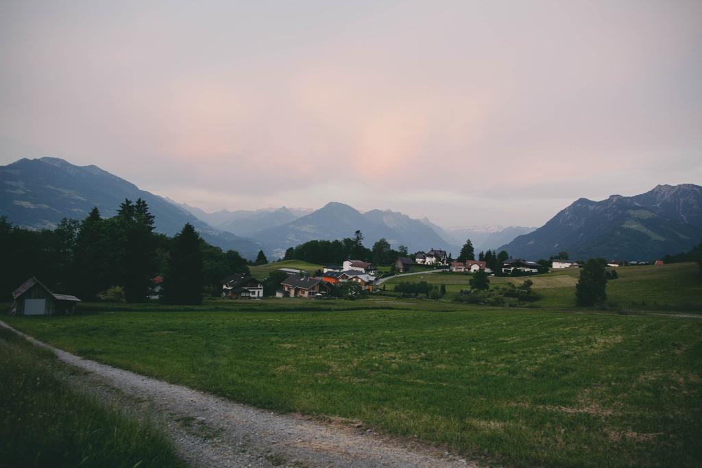 Gurtis Austria