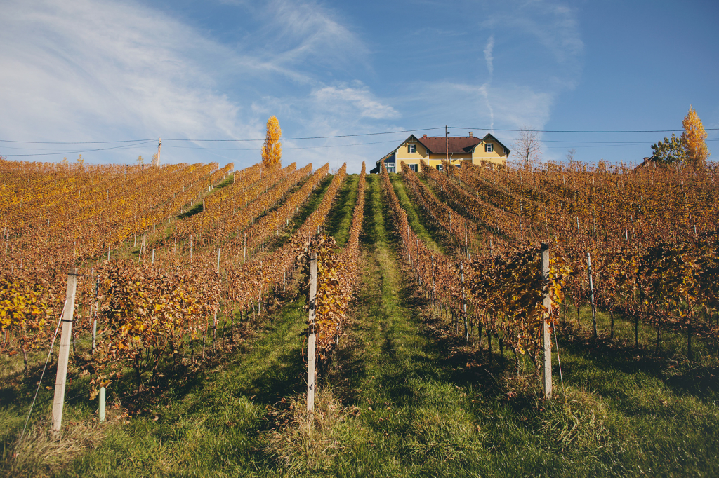 South Styrian Wine Route