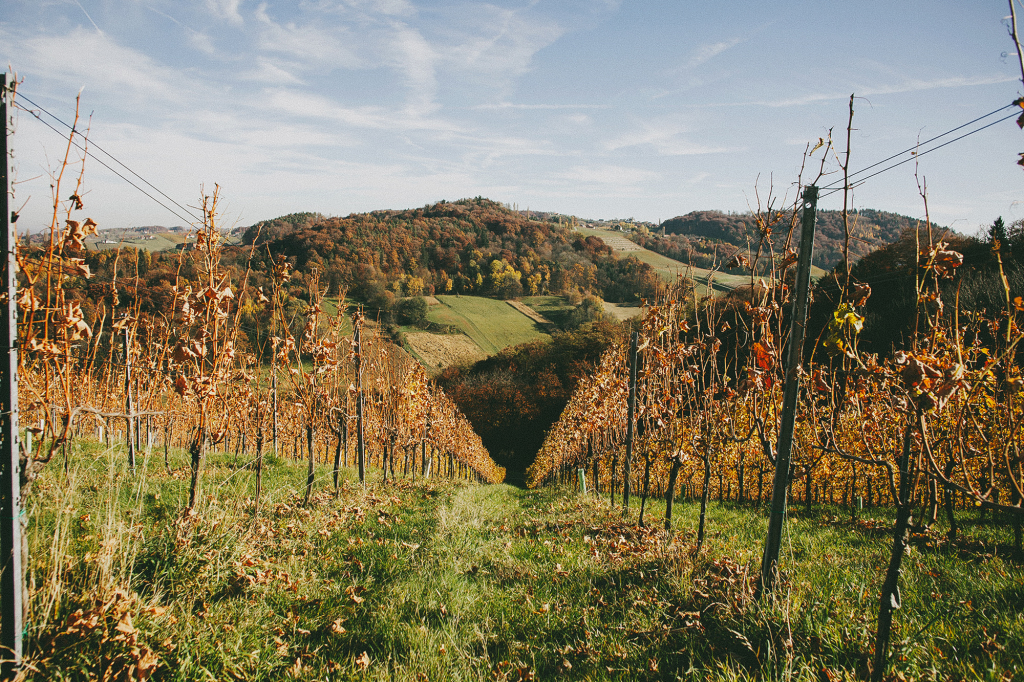 Styrian Wine Route