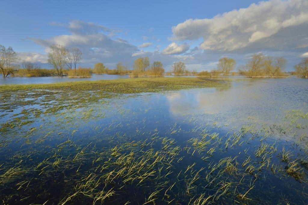 2.2 Wiosenny krajobraz PNUW w okolicy Słońska